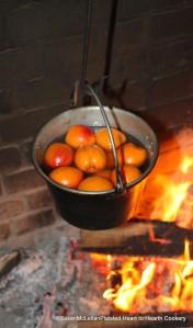 Clarifies Sugar and Apricots