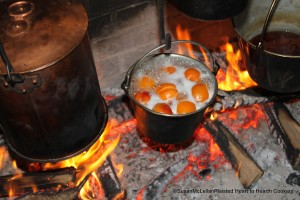 Apricots Boiling