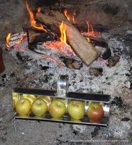 Tin Apple Roaster
