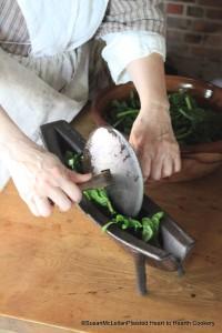 Preparing Spinach Juice