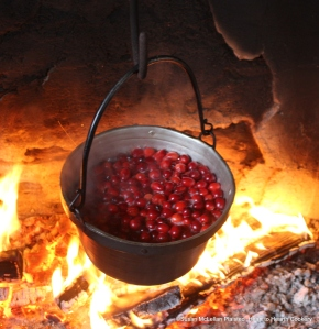 "The fresh cranberries are stewing for the receipt (recipe), ""Cranberry Tarts"""