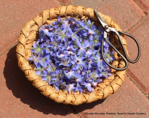 "Borage flowers ""pickt curiously"" for the receipt (recipe) ""Past of Burage: Mrs. Whiteheads"