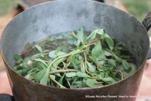 """The purslane cut into long sprigs is added to the stew-pan with the small onions and Pease-Soup for the receipt (recipe) """"A Purslain Soup"""" and boiled in a good broth."""