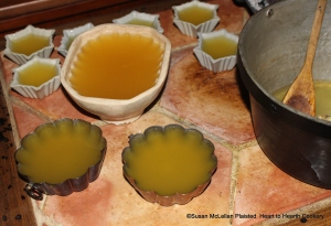 "After the ""moulds"" for the receipt (recipe) ""To make Orange Jelly"" were selected the next step is to fill your moulds with the cooled mixture of the grated rind of China oranges, lemons and Seville oranges in Seville orange juice and isinglass boiled in water until dissolved."