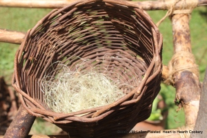 The silks harvested from the Puhwem (Lenape white flour corn) were placed in a grape vine basket on my drying rack for drying.