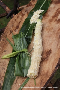 After all the milky kernels have been cut from the ear of Puhwem green corn (Lenape white flour corn in the green or milk stage), leaves from the plant are harvested and filled and folded per the account recorded by John Heckewelder to make green corn bread.